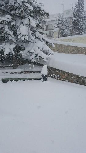 nieve portell enero 2017 (3)