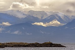 Mountains and Eagle (David Badke) Tags: oakbay bc mountain ocean