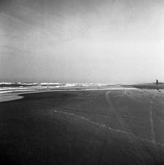 Grão de areia, grão de céu. / Grains of sand, grained skies. (glauberpitfall) Tags: filmphotography yashicamat124b yashinon80mm 400tx blackandwhite monochrome