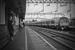 Colchester Station [62/365 2017] (steven.kemp) Tags: bnw blackandwhite monochrome colchester train station perspective vanishing point people lines