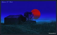 Nel blu dipinto di blu... Marzo-2017 (agostinodascoli) Tags: alberi nature texture photoshop creative agostinodascoli nikon nikkor cianciana sicilia blu rosso landscape paesaggi lunarossa cielo art digitalart digitalpainting