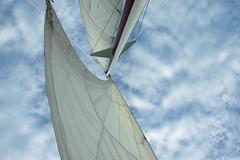 Sail's Away (photo_meg) Tags: sailboat sail keywest utatafeature