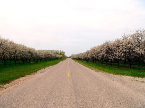 West on Eitzen Road