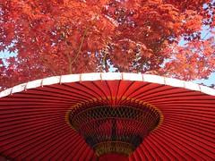 Red Kyoto