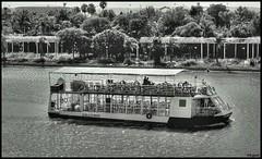 Barco B/N HDR (S3rgio) Tags: blanco rio sevilla guadalquivir barco negro hdr crucero