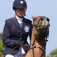 Don't Look Down Your Nose at Me (no1chrism) Tags: chris horse parish jumping competition jersey morgan
