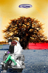 wedding on earth (ivan baio) Tags: wedding tree hat monster vespa mask ufo swampthing baobab piaggio apocalyps