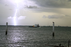 Tampa Bay Lightning (1 Photo Guy) Tags: nature lightning storms blueribbonwinner dpblogsjulystorms