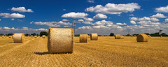 Hay - Panoramic (Stu Worrall Photography) Tags: sky field barley clouds wheat straw poles hay bales stuworrall stuartworrall