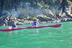 Abel Tasman (oneillci) Tags: newzealand coast kayak abeltasmannationalpark