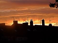 2016-12-08 sunrise (30)roofs (april-mo) Tags: roofs chimneys contrejour sunrise leverdesoleil toits cheminées nord france