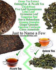 Ingredients for Weight Loss Teas are important, do some research (Natures SlimTea) Tags: tea greentea dieting oolongtea puerhtea antioxidants loseweightnow slimmingtea healthtea loseweightfast healthylife weightlossjourney fatburning bestdiet weightlossblog healthtips weightlosstea slimtea healtharticle geeentea weightlossarticle