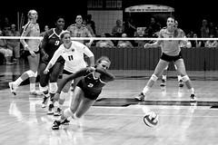 Extra effort (RPahre) Tags: monochrome mono universityofillinois creighton creightonuniversity volleyball huffhall huff champaign illinois robertpahrephotography copyrighted donotusewithoutwrittenpermission