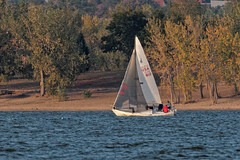 Sailing On A Windy Day (dcstep) Tags: urban usa nature sailboat colorado sailing windy urbannature handheld allrightsreserved cherrycreekstatepark copyright2015davidcstephens dxoopticspro105 y6a4982dxosrgb