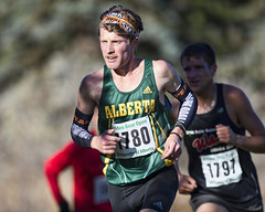 AE3R1758 (Don Voaklander) Tags: woman man male men college sport female race start women edmonton running racing crosscountry trail varsity finish cis pandas universityofalberta canadawest goldenbears voaklander canadianintercollegiatesport donvoaklander