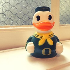 Can't leave without getting an Oregon Duck duckie! (peachy92) Tags: ginza portland portlandor portlandoregon multnomah multnomahcounty multnomahcountyor multnomahcountyoregon instagram 2015 hoteldeluxe universityoforegon oregonducks vacation2015 vacation or us usa unitedstates unitedstatesofamerica oregon ducks duck rubberducks rubberduck duckie ducky rubberducky rubberduckies rubberduckie instagramapp iphoneography iphonegraphy square