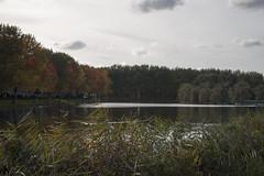 Floriade_251015_38 (Bellcaunion) Tags: park autumn fall nature zoetermeer rokkeveen florapark