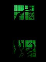 Giant Squid Halloween 2015 (graphixoutpost) Tags: halloween scary eerie creepy spooky hauntedhouse giantsquid halloweenwindows windowsilhouettes