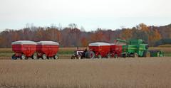 Grain harvest (Larry the Biker) Tags: autumn tractor fall rural michigan farm wheat country farming grain harvest ag agriculture johndeere harvesting washingtontownship farmtractor