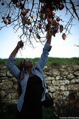 Nigerian woman (Andrea Ruffi) Tags: winter italy woman nature girl beauty fruit three italia tuscany nigeria cachi kaki nigerian naija