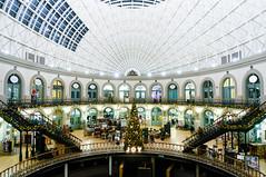 JOY (jonron239) Tags: xmas decorations building architecture interior leeds victorian