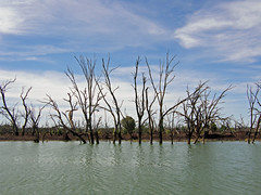 Lake (Kaptain Kobold) Tags: trees sky lake water landscape scenery australia reservoir nsw menindee kaptainkobold