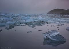 Jökulsárlón - Glacier Lagoon at sunset (Elanor82) Tags: canon eos 5d mark3 mrk3 mk3 iceland island jökulsárlón glacier lagoon ghiacciaio laguna iceberg ice sunset light luce tramonto