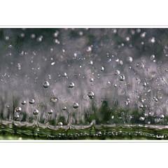 eis (horstmall) Tags: eis ice glace bubbles blasen air luft winter hiver frozen gefroren froide schwäbischealb jurasouabe swabianalps lenningen oberlenningen horstmall