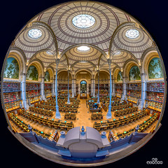 Salle larbouste Panoramique (brenac photography) Tags: europe inha bnf book books brenac brenacphotography d810 france knowledge labrouste library livres nikon nikond810 paris richelieu study wow îledefrance fr bibliotheken bibliotheque
