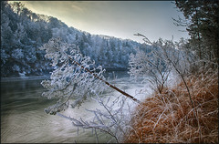 Winterwonderland (guenterleitenbauer) Tags: 2017 guenter günter landscape leitenbauer oberösterreich au bild bilder flickr foto fotos gunskirchen landschaft photo photos picture pictures wasser water wwwleitenbauernet österreich wels winter wonderland winterwonderland austria januar january jänner