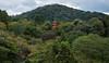 Kiyomizudera Pagoda (CheeToS0) Tags: shinto kyoto japan kiyomizudera temple pagoda