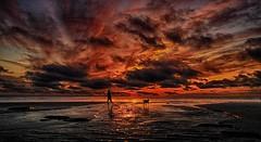 Walking the dog (bainebiker) Tags: beach sunset sky clouds dogwalker dog seascape borth ceredigion walesuk
