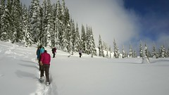 (tsibley) Tags: dad danielle family me mom mtrainier nationalforest nationalpark rainier rebecca samantha snow snowshoe snowshoeing winter