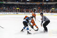 "Missouri Mavericks vs. Wichita Thunder, February 7, 2017, Silverstein Eye Centers Arena, Independence, Missouri.  Photo: John Howe / Howe Creative Photography • <a style=""font-size:0.8em;"" href=""http://www.flickr.com/photos/134016632@N02/32422664500/"" target=""_blank"">View on Flickr</a>"