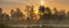 Suburbia shine (Jorden Esser) Tags: vlaardingervaart fog goldenlight houses mist sun trees water sunrise sundawn