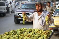 Peshawer 241 cc_resize