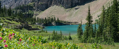 Images from Iceberg Lake Trail (stephaniepluscht) Tags: park panorama lake montana glacier trail national iceberg 2015
