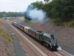 By Royal Appointment. (Kingfisher 24) Tags: scotland a4 royaltrain 60009 unionofsouthafrica bordersrailway