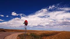 Stop sign in paradise (Eli Nixon) Tags: sky usa color clouds rural landscape colorado interiors rockymountains highplains weldcounty larimercounty autumnalmost