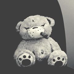 Wilson, the grumpiest bear (Paul J's) Tags: bear toy teddy plush kidrobot wilson kozik smorkin thegrumpiestbear