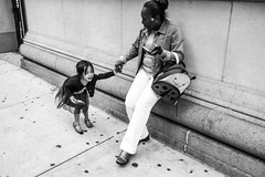 i feel just like a child (bogey!) Tags: new york nyc newyorkcity people urban children hands downtown walk crying africanamerican fujifilm contact tantrum babysitter unhappy fit sitter childcare x100t