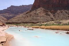 Grand Canyon 2015 629