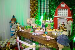 FAZENDINHA DO TULIO 2015 FINAL-15 (agencia2erres) Tags: aniversario 1 infantil festa ano fazenda fazendinha