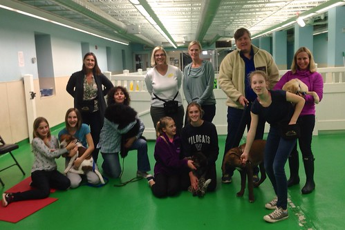 "Puppy Head Start, Session N, Fall 2015; Class Photo-02 • <a style=""font-size:0.8em;"" href=""http://www.flickr.com/photos/65918608@N08/22723456116/"" target=""_blank"">View on Flickr</a>"
