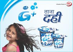 Gopajee Ananda Home Made Dahi (rsd.dairy) Tags: dahi