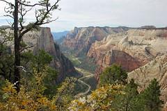 Zion National Park (v seger) Tags: park river observation point landscape utah canyon landing virgin national angels zion
