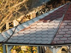 nach einer kalten Nacht (Peter L.98) Tags: roof canon frost covered dach raureif s110 projekt365