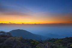 The Golden Twilight (baddoguy) Tags: blue mountain horizontal landscape thailand outdoors photography dawn horizon nopeople copyspace dramaticsky tropicalrainforest traveldestinations colorimage beautyinnature goldcolored horizonoverland sunrisedawn