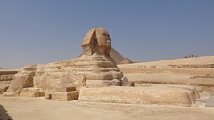 The Sphinx (Rckr88) Tags: giza cairo egypt africa travel thesphinx the sphinx ancient ancientegypt relic relics statue statues pyramids thepyramidsofgiza pyramid