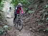 P1050434 (wataru.takei) Tags: mtb lumixg20f17 mountainbike trailride miurapeninsulamountainbikeproject